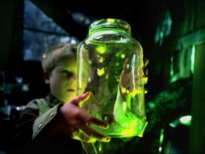 fireflies_glass_jar